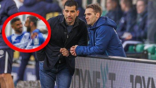 Schalke 04 soll an einem Darmstadt-Duo buhlen.