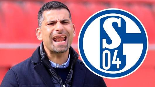 Beim FC Schalke 04 greift Dimitrios Grammozis nun knallhart durch.