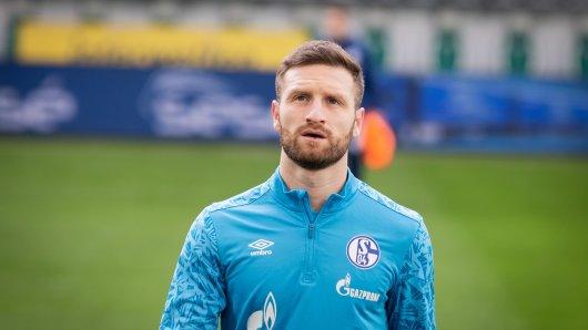 Kehrt Shkodran Mustafi in den Kader des FC Schalke 04 zurück? Trainer Grammozis hat darauf eine Antwort gegeben.