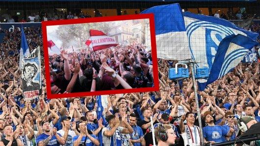 Die Fans des FC Schalke 04 bekommen endlich wieder einen Grund zum Jubeln.