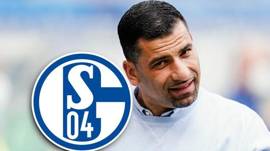 Wirbel beim FC Schalke 04! Gibt es doch noch die Trennung von Dimitrios Grammozis?