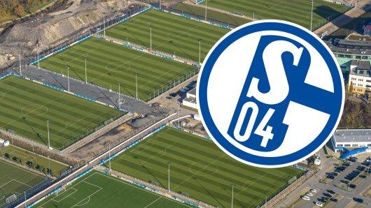 Schalke 04 hat ein besonderes Projekt in Angriff genommen.