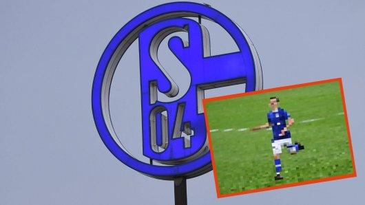 Gute Nachrichten beim FC Schalke 04! ER erhält einen Profivertrag.