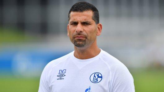 FC Schalke 04: Dimitrios Grammozis steht vor einer schwierigen Aufgabe.
