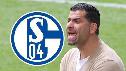 FC Schalke 04: Trainer Dimitrios Grammozis hat genug.