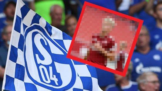 Fans des FC Schalke 04 hatten in diesem Sommer einen ganz bestimmten Wunsch-Transfer.