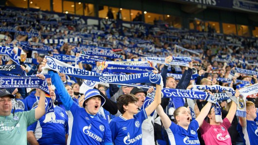 Für die Fans des FC Schalke 04 gibt es Grund zur Freude.