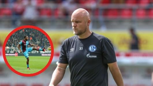 Nach dem geplatzen Enrich-Deal ist der FC Schalke 04 weiterhin auf der Suche nach einem Stürmer. Sportdirektor Rouven Schröder könnte bei der Suche nach vertraglosen Spielern auch auf einige nahmhafte Ex-Nationalspieler treffen.