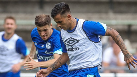 FC Schalke 04: Bittere Nachrichten für die Knappen.