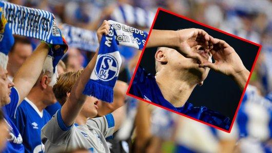 Beim FC Schalke 04 soll mehr geküsst werden – deshalb entsteht jetzt eine S04-Singlebörse.