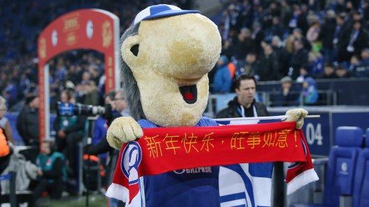 Schalke reist im Juli nach China - bereits zum dritten Mal.