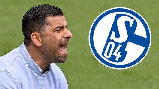 Trainer Dimitrios Grammozis kann beim FC Schalke 04 auf einige hochtalentierte Nachwuchsspieler zurückgreifen.
