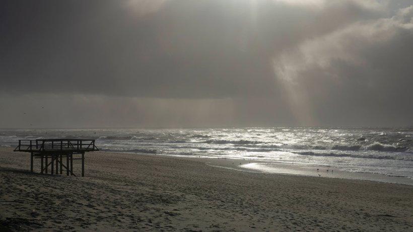 Urlaub an der Nordsee: Frau geht an Strand spazieren – und bricht fast in Tränen aus