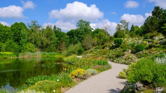 München: Im Botanischen Garten spielten sich dramatische Szenen ab.
