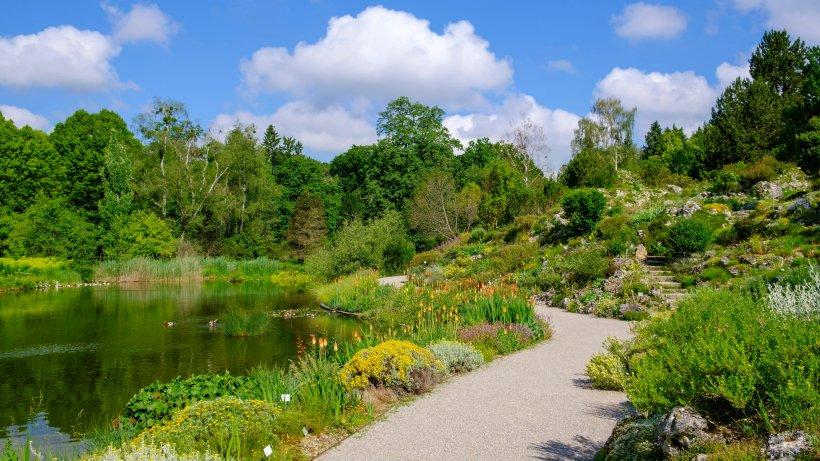 München: Mann bestellt Frau in Botanischen Garten – was dann passiert, ist schlimm