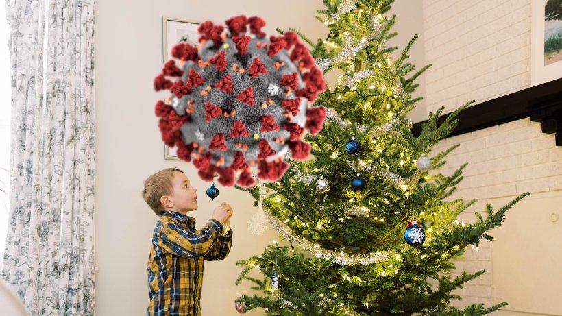 Corona-Schock an Weihnachten: Deshalb werden Weihnachtsbäume dieses Jahr richtig teuer