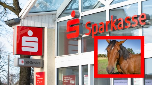 Mit einem Pferd marschiert ein Mann in eine Sparkasse in Bayern. Dann wird es wild.