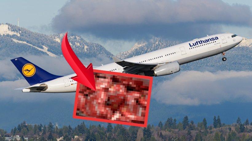 Lufthansa: Neuerung für die Passagiere! Das gibt es bald in Flugzeugen – du kennst es sicher noch von AirBerlin