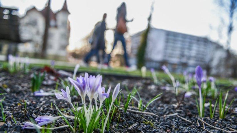 Wetter in Deutschland: Experte spricht Klartext – DAS droht jetzt