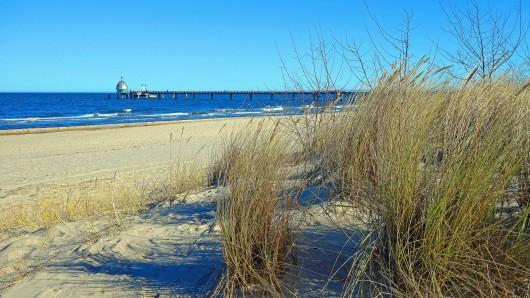 Ein Urlaub an der Ostsee ist trotz Corona noch immer beliebt. Auf Usedom ist jetzt aber etwas entdeckt worden, dass eine gewisse Furcht einflößen könnte. (Symbolfoto)