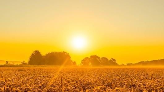 Der Sommer war eher trüb und kühl. Könnte uns der Herbst endlich das Wetter vergolden? (Symbolfoto)