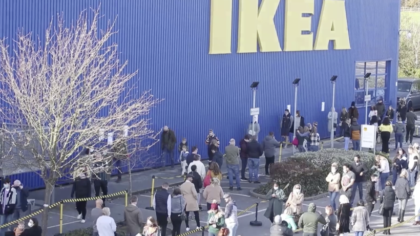 Hunde Bei Ikea Erlaubt